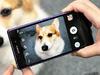 Sony Xperia Z2相機動靜皆宜 錄影功能再進化