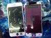 傳5.5吋蘋果手機將命名iPhone 6L 實機照再曝光